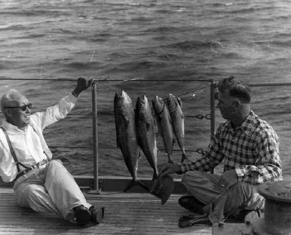 이승만 대통령과 밴플리트 미8군 사령관 사진