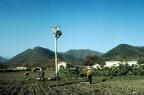 농촌풍경 및 농어촌 전화 사업