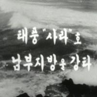 태풍 사라호 남부지방 강타 원문이미지